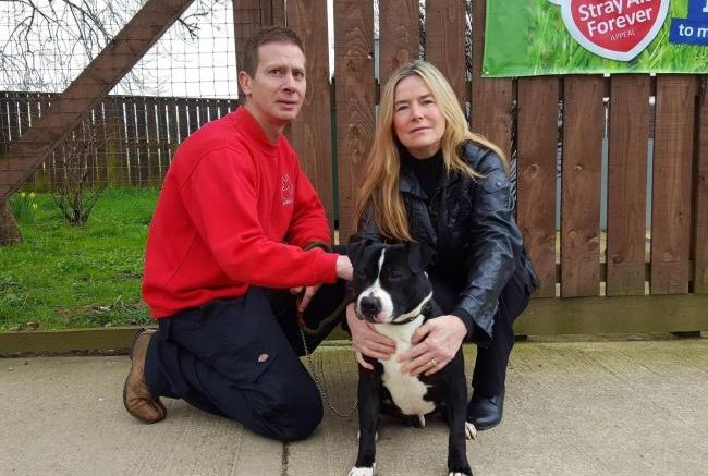 Donation will help Coxhoe-based dog rescue charity Stray Aid find its own forever home