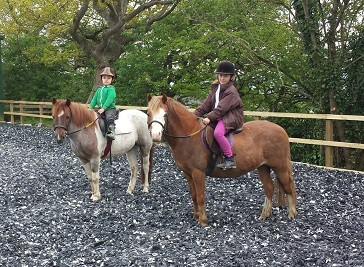 Hole In The Wall Horse Riding School