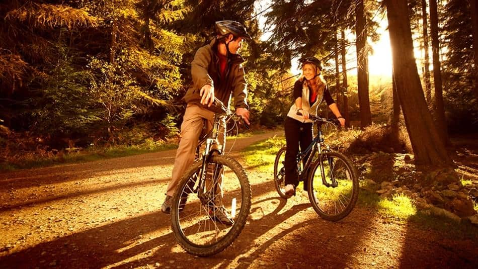 Hamsterley Forest Cycling